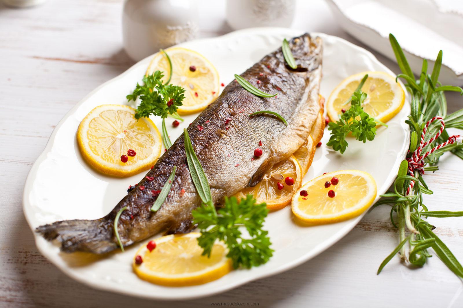 آموزش ۸۳ نوع غذای دریایی